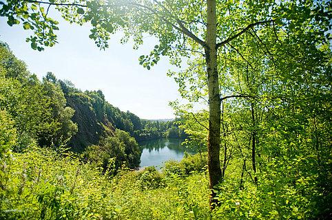 Blick auf den See im Basaltpark in Bad MarienbergApothekergarten in Bad Marienberg, Westerwald