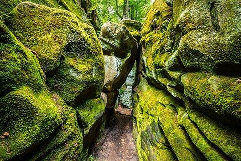 Teufelsschlucht Naturpark Südeifel, Eifel