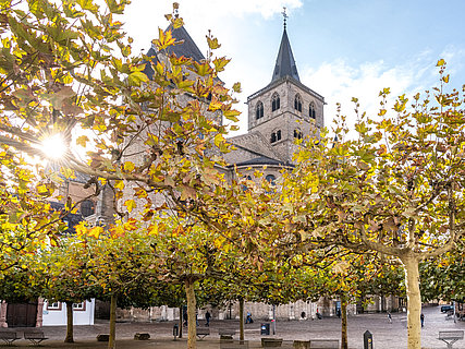 Dom in Trier im Herbst, Mosel