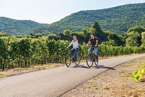 Radtour durch die Weinberge in Laach bei Mayschoss, Ahrtal
