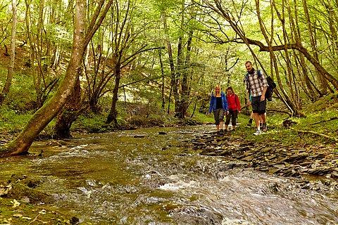 Wanderer im Tal der Endert, Eifel