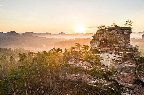 Der Lämmerfelsen am Dahner Felsenpfad